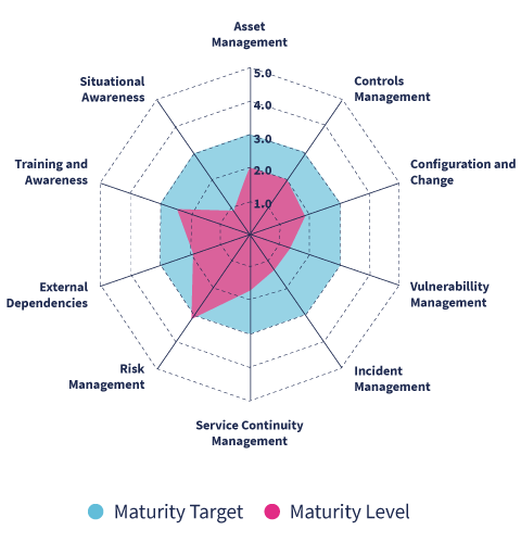 Cyber Security Assessment Maturity Level